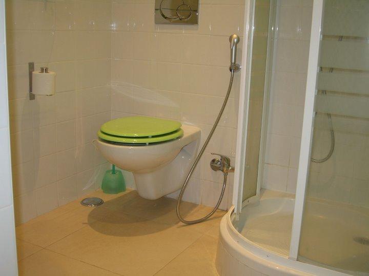 Construir, remodelar, reparar ou equipar a casa ou imóvel : Chuveiro