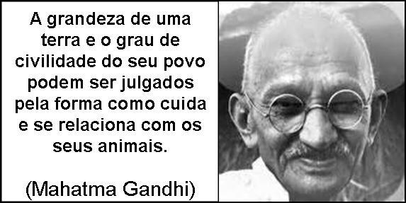 Gandhi e os animais.jpg
