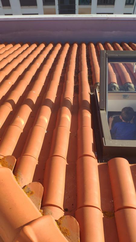telhado1.jpg