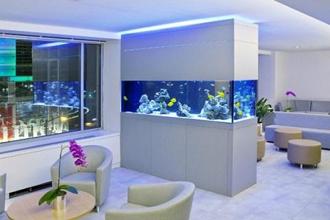 aquários-de-parede-embutido-11.jpg
