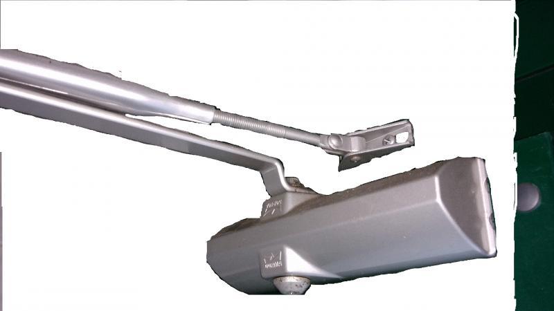 Mola 2.gif