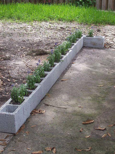 13fc50ec7463bccd32daaa7c329a4226--potager-garden-garden-edging.jpg