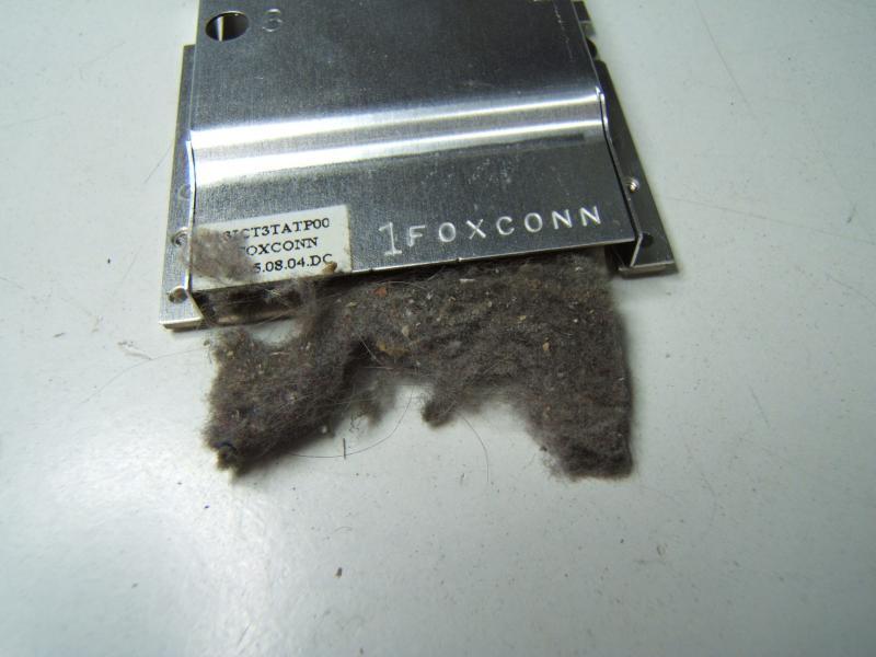 DSCF0817.JPG